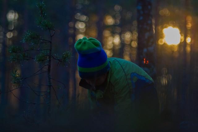 poika_ja_metsa