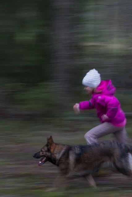 tytto_ja_koira